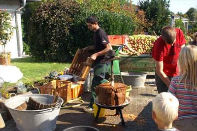 Frischer geht es nicht!  Zuerst wurden die  Äpfel gemahlen, und dann von Hand in einer  Apfelpresse gepresst.  Der